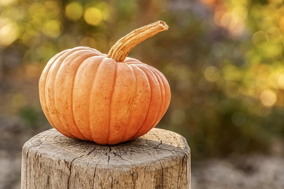 vad kan man vara på halloween